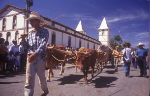 Romaria de Carros de Bois da Festa de Trindade (GO) é o mais novo bem cultural do Brasil
