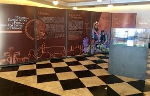 Romaria de Carros de Boi da Festa do Divino Pai Eterno de Trindade (GO) é retratada em exposição