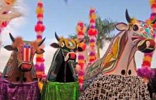 Festival de Bumba-meu-boi, no Maranhão, homenageia Iphan em 2019