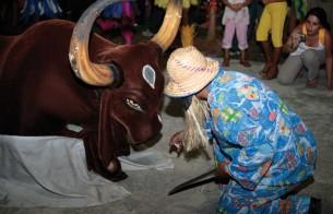 Certificado de Patrimônio Cultural do Brasil será entregue durante Festival de Parintins (AM)
