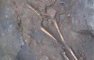 Arqueologia revela a etnia dos primeiros habitantes em Pernambuco