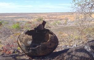 Evento discute Arqueologia, Patrimônio, Arte e Cultura em Roraima