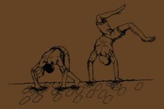 Livro Capoeira