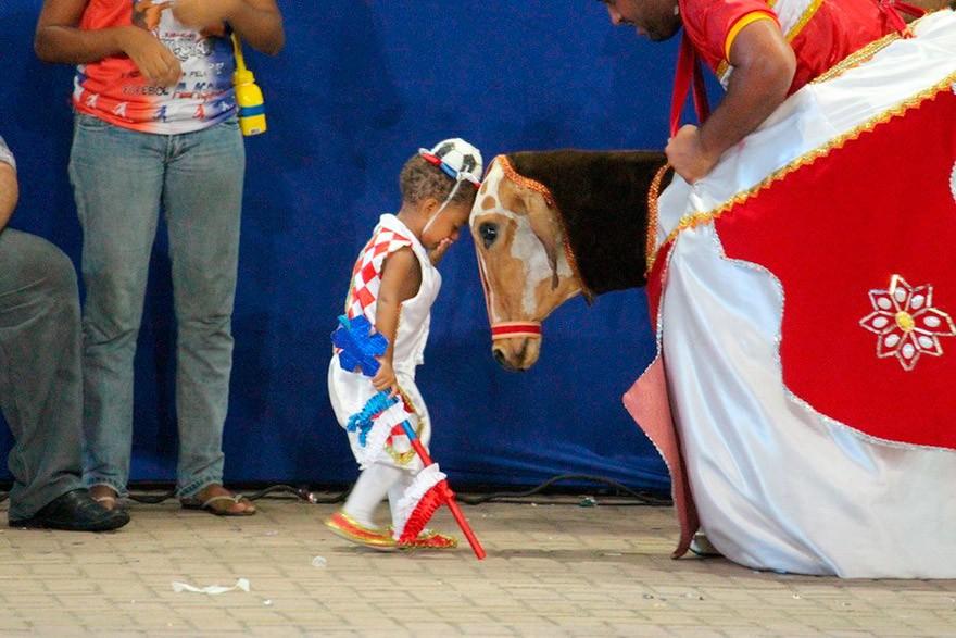 AL_IMAT_Bumba_meu_Boi_Boi_de_Carnaval