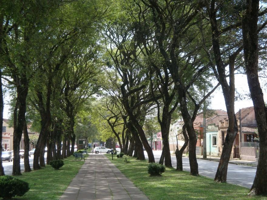 Av. Manoel Pedro (Antiga Av. das Tropas)