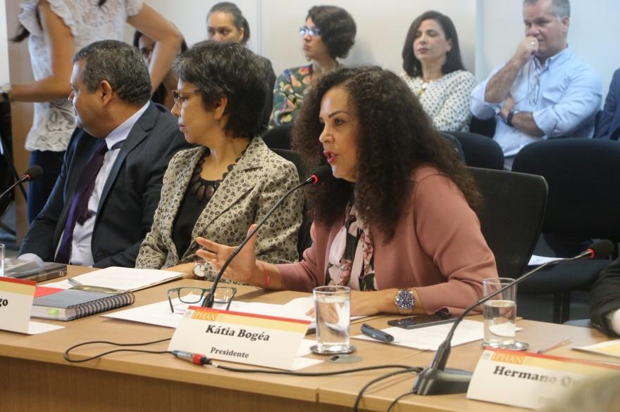RS_Pelotas_Conselho_Consultivo