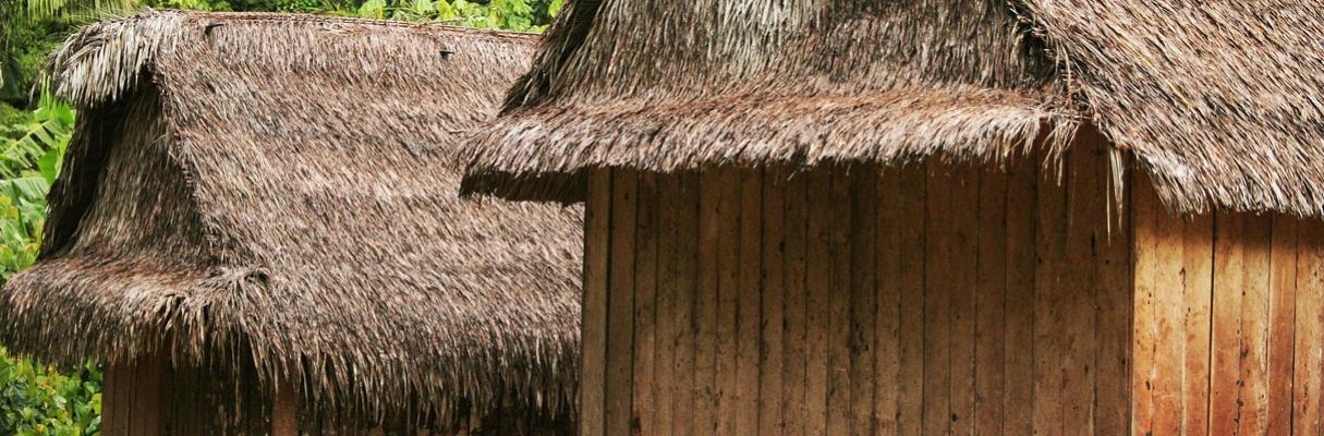 Habitações dos povos da floresta