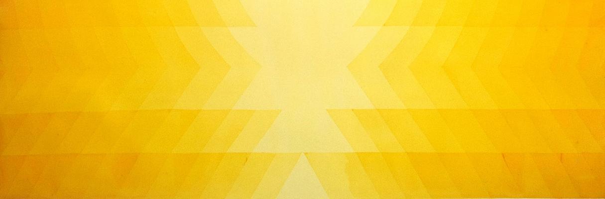 Alexandre Vogler - Pintura de Fresnel