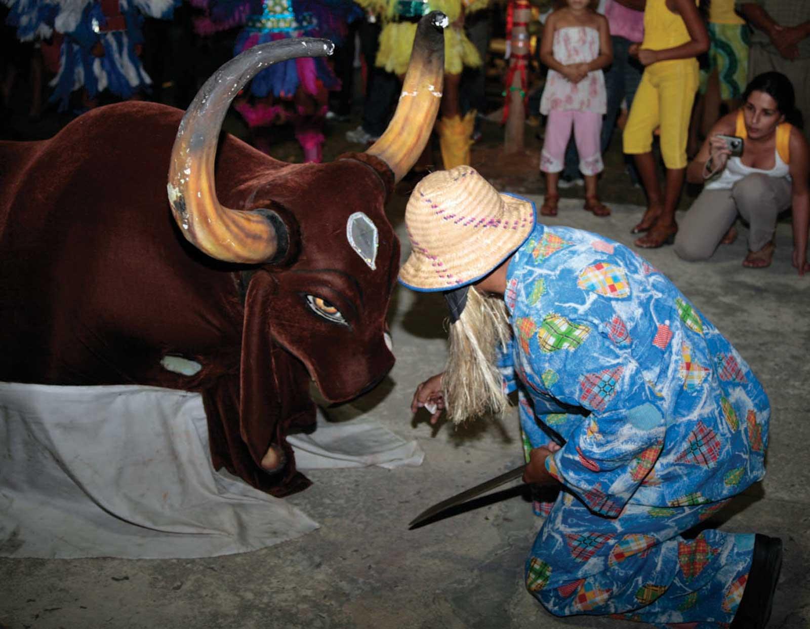 Grêmio Folclórico Boi Bumbá Brilhante de Manaus (AM)