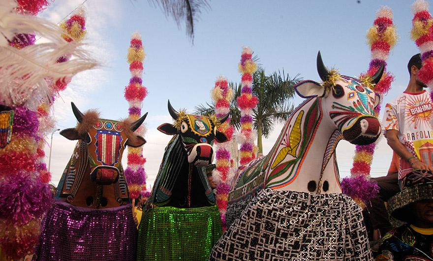 O Bumba meu boi é um bem que está enraizado na cultura maranhense e que reflete valores essenciais de sua formação social